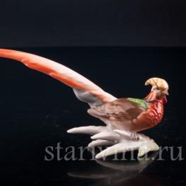 Статуэтка птицы из фарфора Золотой фазан, миниатюра, Hutschenreuther, Германия, 1970 гг..